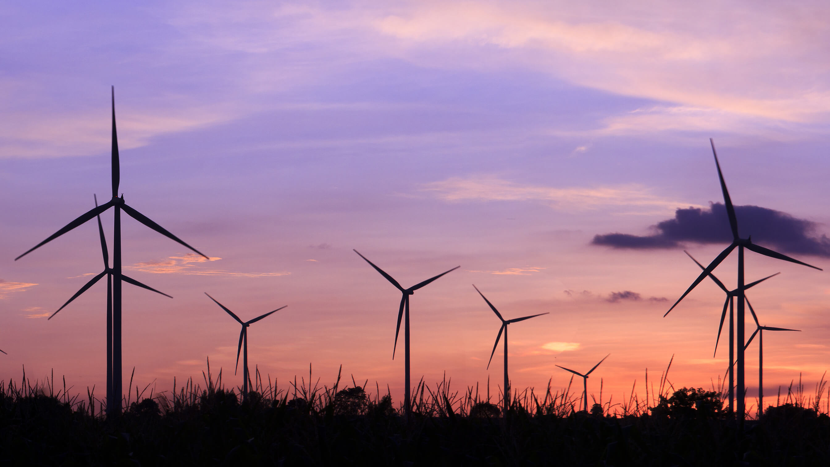 Wind turbines with purple sunset in background