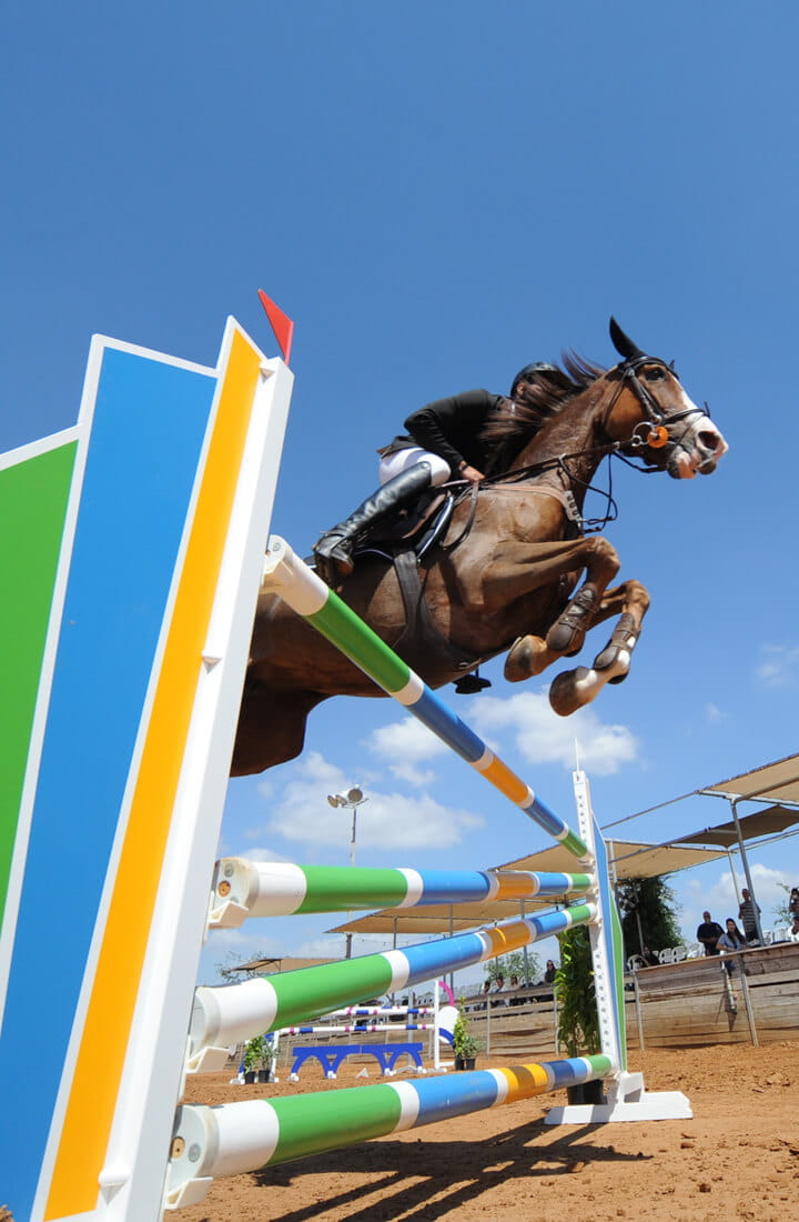 Showjumping at equastrian event