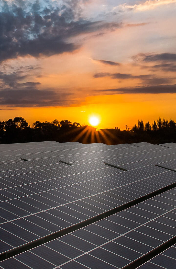 sun rising over solar panels