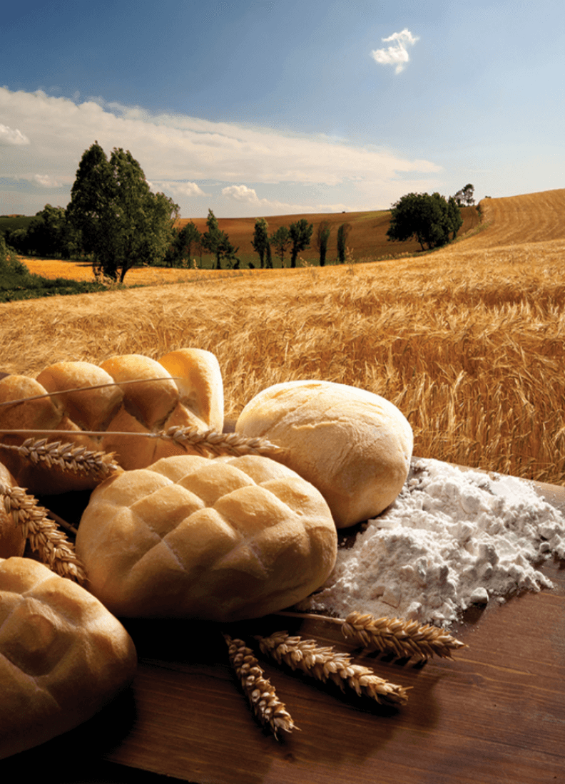 Bakery goods in a field