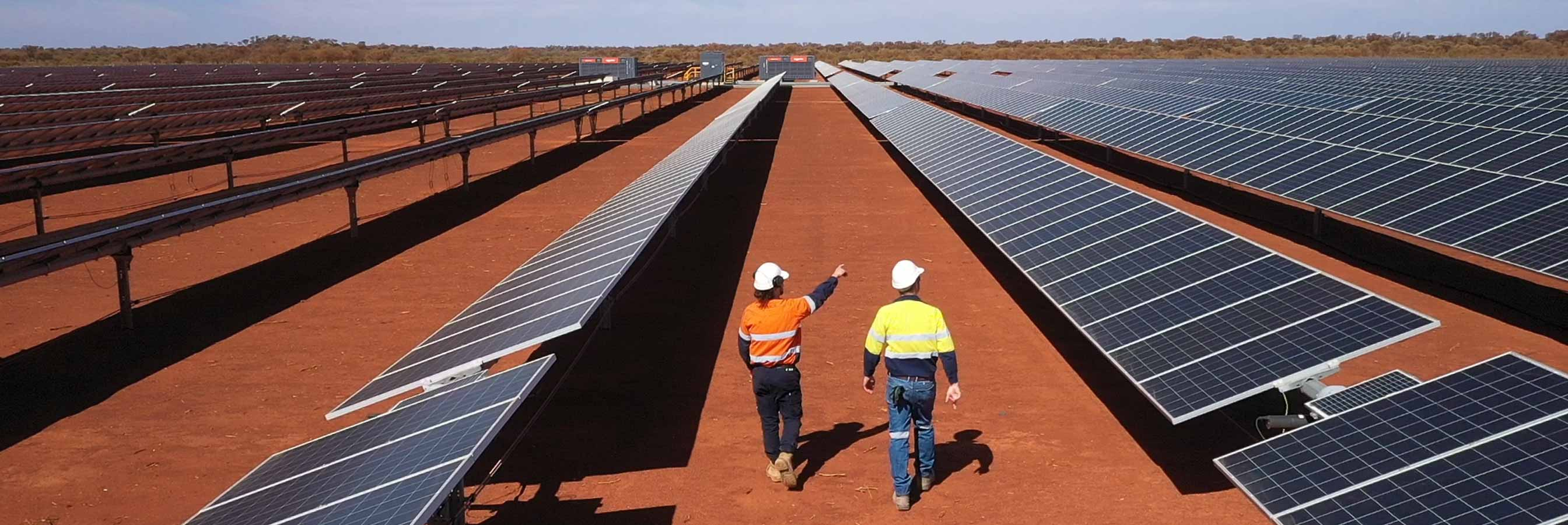 Two work people walking amongst solar panels