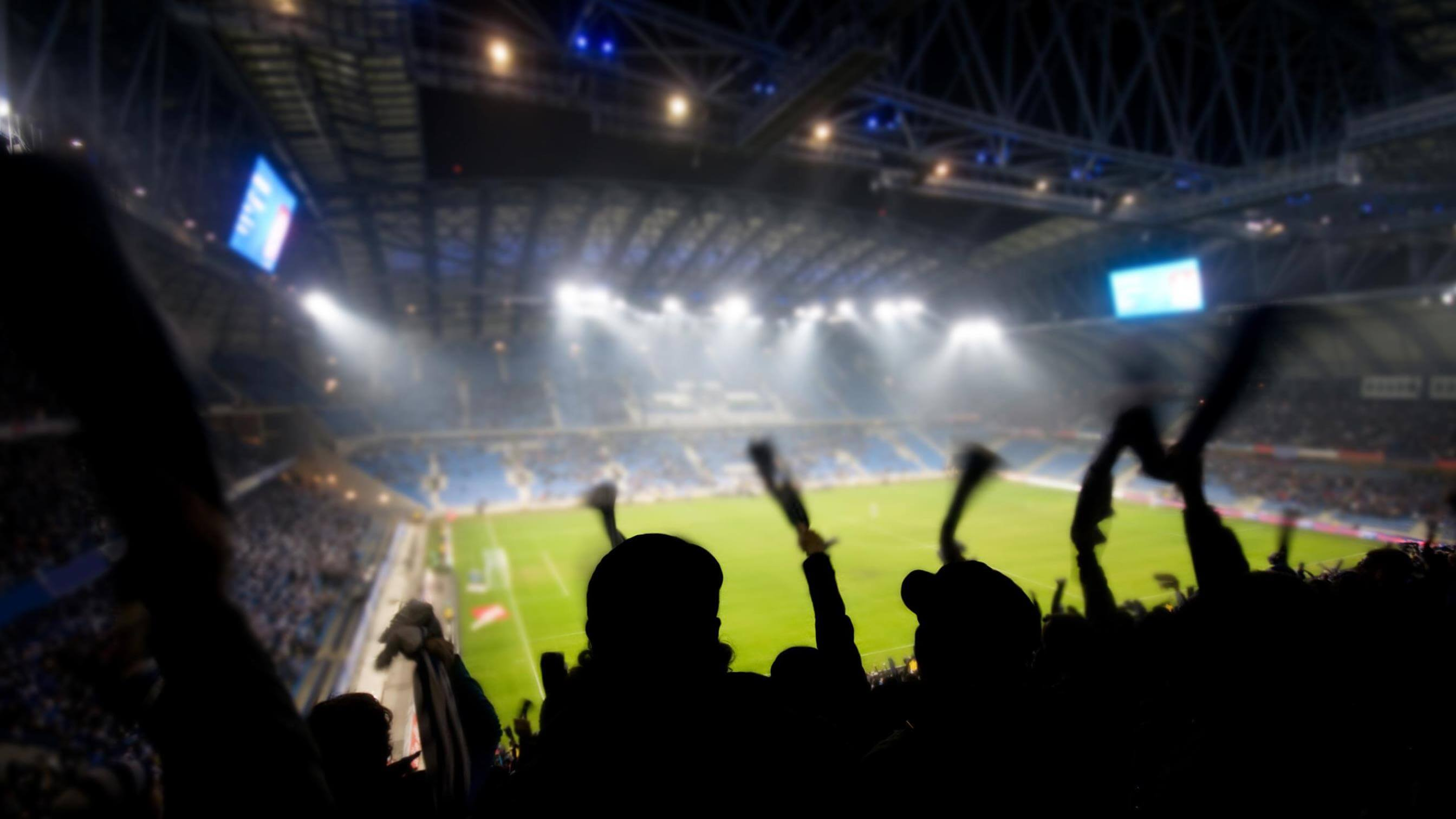 Soccer fans cheering at night game in Brazil