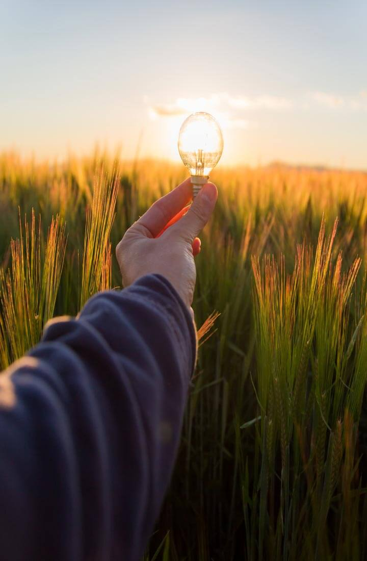 Lightbulb held up against sun in a field. By a disembodied hand and arm